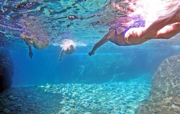 costa brava oceanswimsafaris.com swim