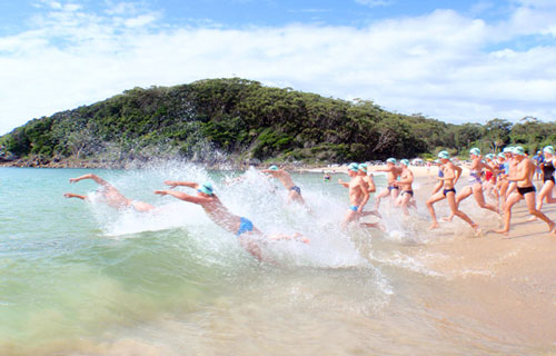pacific palms rock swim forster elizabeth beach